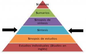 Modelo de 6 niveles de Haynes